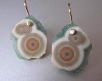 Orbicular Ocean Jasper Drusy Slices Solid 14k Gold Earrings