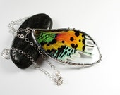 Real Moth Necklace, Sunset Moth Pendant, Butterfly Wing Jewelry