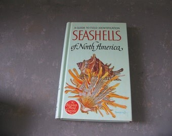 Vintage Shell Guide Book, Illustrated, North America Shells, hardcover, hardback, color