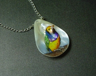 Gouldian Finch/ Hand Painted Bird on Sea Shell Pendant/ Hand Painted Abalone Shell Necklace/ Sea Shell Art