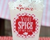 You Spice Up My Life Valentine Idea and PRINTABLE (INSTANT DOWNLOAD) by Love The Day