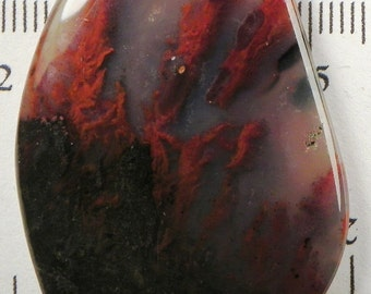 Beautiful Canadian River Agate Cabochon (AGT2201)