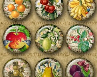 1 inch Digital Printable Circles FRESH FRUIT collage sheet for Jewelry Pendants Magnets etc...vintage fruit+flower-butterfly-bird collages