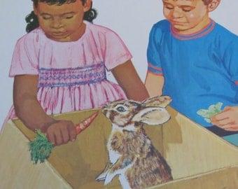 "Original Vintage School Classroom Poster Print - Circa 1967 - Science - Rabbit - 9"" x 12"""