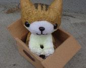 Cat in box plush