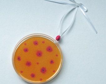 Petri Dish Ornament L9: Orange with Pink Bacteria