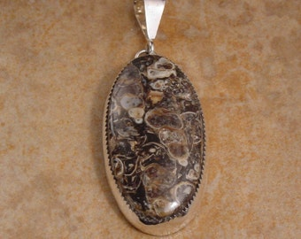 Turritella Agate and Sterling Silver Oval Pendant