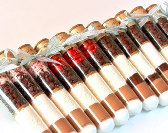 Test Tube Hot Chocolate Favor- Hot Cocoa Tubes, Corporate Gift, Stocking Stuffer, Winter Wedding, Glass Vial, Layered Mix