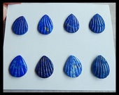 8 PCS,Carved Lapis Lazuli Shell Cabochon,17x14x4mm,11.4g
