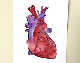 Have a Heart. An archival anatomical heart print.