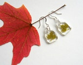 Real Maple Leaf Woodland Earrings - botanic jewelry, pressed leaves, green, leaf earrings, small earrings, Canada, natural, eco, ooak, gift