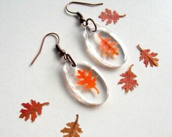 Real Autumn Oak Leaf Woodland Earrings - botanical jewelry, pressed leaves, oak leaf, Autumn earrings, leaf earrings, Autumn, natural, ooak