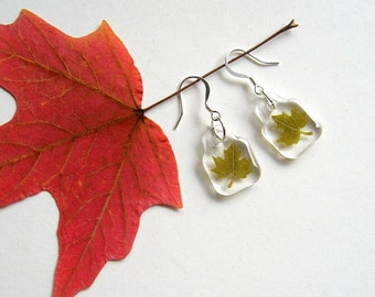 Real Maple Leaf Woodland Earrings - botanic jewelry, pressed leaves, green, leaf earrings, small earrings, Canada, natural, eco, ooak, gift