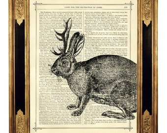 Jackalope Rabbit Deer Woodland Mythical Creature - Vintage Victorian Book Page Art Print Steampunk