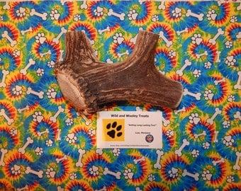 "Organic Jumbo Elk Antler Dog Chew ""Made in Montana"" (Lot P1)"