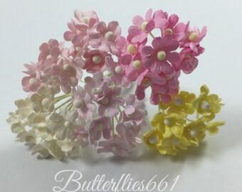 NEW Arival 100 mixed sweet Pastel mini Gypso flower