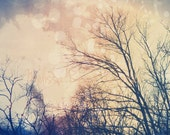Skyscape, Trees, Clouds, Bokeh, 6x9 + More Sizes, Dreamy, Warm Pink, Soft Yellow, Midnight Blue, Photography Print, Home Decor, Wall Art