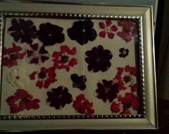 Framed fresh flowers