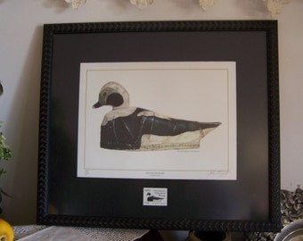 SALE Framed 1979 Old Squaw Duck Print Signed w/1981 stamp - John Eggert 401/600 Mass