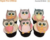 SALE Cake Cupcake Toppers Owl Cake Toppers and Cupcake Decorations, Birthday Cake and Baby Shower Decorating - OWLS Girls