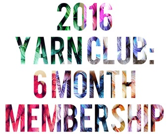 2016 Yarn Club - 6 Month March-August Membership - Exclusive Colorway