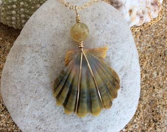 Hawaiian Moonrise Shell, Peruvian Opal, 14k Gold Filled Chain Necklace