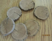 6 Sliced Driftwood Round Cuts Wood Craft Supplies Woodworking