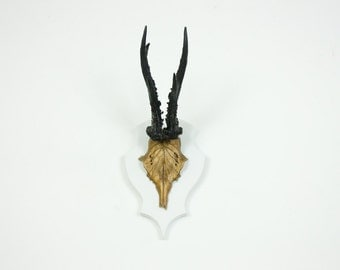 Gold & Black Resin Antlers / Animal-Friendly Faux Taxidermy / Small Roe Deer