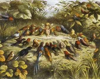 Rehearsal In Fairy land Richard Doyle 1870 Vintage Reproduction Print 11 x17