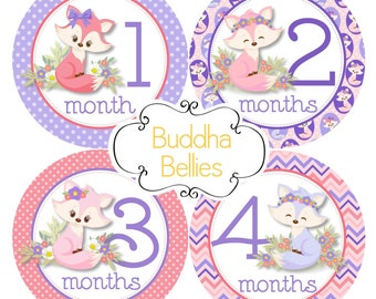 Fox Baby Girl Monthly Baby Stickers - Baby Month Stickers - Fox Nursery - Fox Baby Shower Gift - Baby Monthly Stickers - Milestone Stickers
