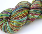 "Kettle Dyed Sock Yarn, Superwash Merino and Nylon 75/25 Fingering Weight, in ""Giverny"""