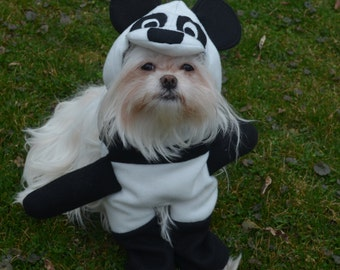 Adorable Panda Dog Costume for small breed dogs