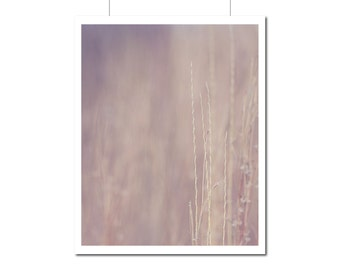 Nature Photography Soft Simplistic Home Decor | Brown Pink Wall Art | Spring Fall Fields Golden | Wisconsin Art Floral