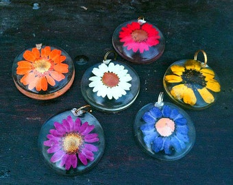 Preserved Daisy Round Dome Pendant Necklace