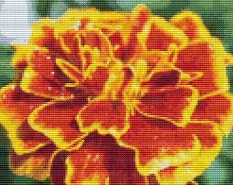 Orange Beauty Cross Stitch Pattern Beautiful Rich Color Design Floral pdf Instant Download Modern Design