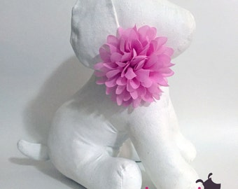 Pink Chiffon Flower Collar Accessory