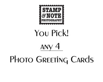 Blank Photo Greeting Card Sets, Photography Greeting Cards, Mix and Match Cards, Nature Cards, Flower Cards, Landscape Cards, Boston Cards