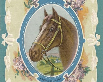 A Noble Charger - Antique 1910s Embossed Unsigned Horse Art Postcard