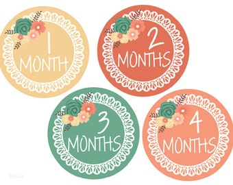 Baby Milestone Stickers Girl Stickers Baby Monthly Stickers Baby Month Stickers Monthly Baby Stickers