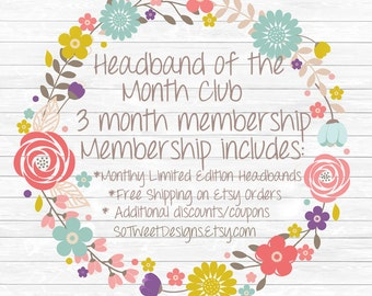 Headband of the Month Club - 3 month membership