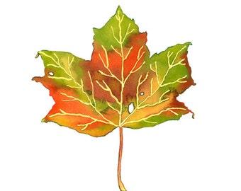 Autumn Leaf Illustration Limited Edition Print