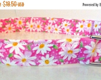 "Sale 50% Off Pink & White Shasta Daisy Dog Collar -""Shasta""- NO EXTRA Charge for colored buckles"