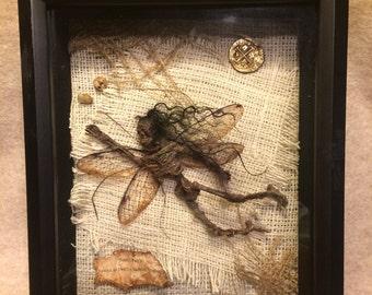 ooak realistic pixkie dead Tooth Fairy cicada wings Fantasy miniature doll art goth dollhouse sideshow gaff Hoax joke