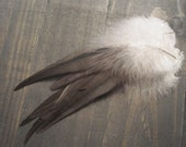 10 Dark Grey Rooster Saddle Feathers ~ Cruelty Free **Use Coupon Code FEATHERS20 and save 20% on all Feathers**