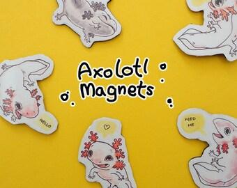 Axolotl Magnets