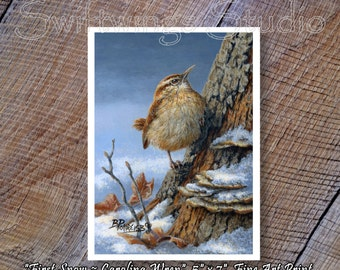 Carolina Wren Giclee Print - Bird Print - Wren Image - Wildlife Print - Bird Art
