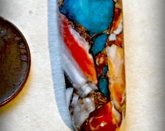 Spiny Oyster- Turquoise from Kingman mine Bronze cabochon  cab38