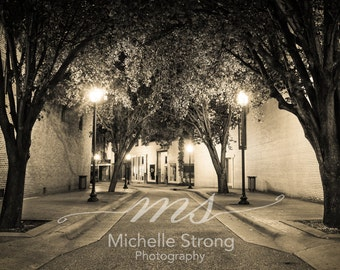 Fine Art Photography, French Inspire Prints, Large Wall Art, Walkway Photography, Sepia Prints, Americana Art, Night Photography, Rustic Art