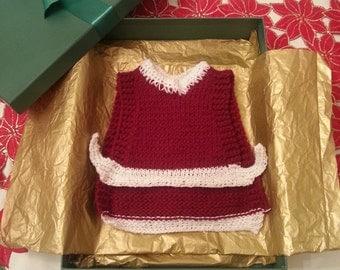 Santa Claus Christmas Chicken Sweaters - Handmade