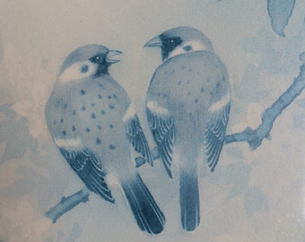 Vintage Framed print of 2 finches, very shabby chic